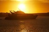 Australasian;Australia;Australian;boat;boats;cruise;cruises;dusk;evening;Gordon-River-Cruise-Boat;Gordon-River-Cruises;Island-of-Tasmania;launch;launches;Macquarie-Harbor;Macquarie-Harbour;nightfall;orange;pleasure-boat;pleasure-boats;sky;State-of-Tasmania;Strahan;Strahan-Harbor;Strahan-Harbour;sunset;sunsets;Tas;Tasmania;The-West;tour-boat;tour-boats;tourism;tourist;tourist-boat;tourist-boats;twilight;water;West-Tasmania;Western-Tasmania