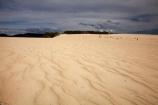 Australasia;Australasian;Australia;Australian;black-cloud;black-clouds;black-sky;cloud;cloudy;dark-cloud;dark-clouds;dark-sky;dune;dunes;gray-cloud;gray-clouds;gray-sky;grey-cloud;grey-clouds;grey-sky;Henty-Dunes;Henty-Sand-Dunes;Island-of-Tasmania;rain-cloud;rain-clouds;ripple;ripples;sand;sand-dune;sand-dunes;sand-hill;sand-hills;sand-ripple;sand-ripples;sand_dune;sand_dunes;sand_hill;sand_hills;sanddune;sanddunes;sandhill;sandhills;sandy;State-of-Tasmania;storm;storm-clouds;storms;stormy;Strahan;Tas;Tasmania;The-West;West-Tasmania;Western-Tasmania;wind-ripple;wind-ripples
