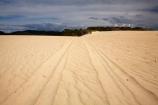 Australasia;Australasian;Australia;Australian;beach;beaches;bike-track;bike-tracks;black-cloud;black-clouds;black-sky;cloud;cloudy;dark-cloud;dark-clouds;dark-sky;dune;dunes;gray-cloud;gray-clouds;gray-sky;grey-cloud;grey-clouds;grey-sky;Henty-Dunes;Henty-Sand-Dunes;Island-of-Tasmania;Quad-Bike-Track;Quad-tracks;rain-cloud;rain-clouds;ripple;ripples;sand;sand-dune;sand-dunes;sand-hill;sand-hills;sand-ripple;sand-ripples;sand_dune;sand_dunes;sand_hill;sand_hills;sanddune;sanddunes;sandhill;sandhills;sandy;State-of-Tasmania;storm;storm-clouds;storms;stormy;Strahan;Tas;Tasmania;The-West;tire-print;tire-track;tire-tracks;tyre-prints;tyre-track;tyre-tracks;West-Tasmania;Western-Tasmania;wind-ripple;wind-ripples