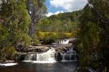 Australasian;Australia;Australian;brook;brooks;cascade;cascades;Cradle-Mountain-_-Lake-St-Clair-National-Park;Cradle-Mt-_-Lake-St-Clair-National-Park;creek;creeks;falls;flow;Island-of-Tasmania;natural;nature;Pencil-Pine-Creek;scene;scenic;State-of-Tasmania;stream;streams;Tas;Tasmania;The-West;water;water-fall;water-falls;waterfall;waterfalls;West-Tasmania;Western-Tasmania;wet