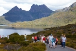 Australasian;Australia;Australian;Cradle-Mountain;Cradle-Mountain-_-Lake-St-Clair-National-Park;Cradle-Mt-_-Lake-St-Clair-National-Park;Dove-Lake;Dove-Lake-Circuit;hike;hiker;hikers;hiking;hiking-track;hiking-tracks;Island-of-Tasmania;people;person;State-of-Tasmania;Tas;Tasmania;The-West;tourism;tourist;tourists;tramp;tramper;trampers;tramping;tramping-tack;tramping-tracks;trek;treker;trekers;treking;trekker;trekkers;trekking;walk;walker;walkers;walking;walking-track;walking-tracks;West-Tasmania;Western-Tasmania