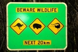 australasia;australia;australian;beware-wildlife;bird;birds;kangaroo;Kangaroo-Warning-Sign;kangaroos;Lasiorhinus-latrifrons;lyre-bird;lyre-birds;lyre_bird;lyre_birds;lyrebird;lyrebirds;mount-buffalo-n.p.;mount-buffalo-national-park;mount-buffalo-np;mt-buffalo-n.p.;mt-buffalo-national-park;mt-buffalo-np;mt.-buffalo-n.p.;mt.-buffalo-national-park;mt.-buffalo-np;natural;nature;next-20-km;next-20km;next-twenty-kilometres;Road;road-sign;road-signs;road_sign;road_signs;roads;roadsign;roadsigns;sign;signs;symbol;symbols;tranportation;transport;travel;victoria;warn;warning;wildlife;wombat;wombats;yellow-black