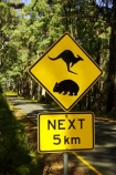australasia;australia;australian;bend;bends;centre-line;centre-lines;centre_line;centre_lines;centreline;centrelines;corner;corners;driving;highway;highways;kangaroo;Kangaroo-Warning-Sign;kangaroos;Lasiorhinus-latrifrons;mount-buffalo-n.p.;mount-buffalo-national-park;mount-buffalo-np;mt-buffalo-n.p.;mt-buffalo-national-park;mt-buffalo-np;mt.-buffalo-n.p.;mt.-buffalo-national-park;mt.-buffalo-np;natural;nature;next-5-km;next-five-kilometres;open-road;open-roads;Road;road-sign;road-signs;road-trip;road_sign;road_signs;roads;roadsign;roadsigns;sign;signs;straight;symbol;symbols;tranportation;transport;transportation;travel;traveling;travelling;trip;victoria;warn;warning;wildlife;wombat;wombats;yellow-black