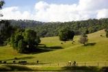 agricultural;agriculture;australasia;australasian;australia;australian;autumn;autumn-colour;autumn-colours;autumnal;autumninal;avenue;avenues;bicycle;bicycles;bike;bikes;Bright;country;countryside;cycle;cycler;cyclers;cycles;cyclist;cyclists;farm;farming;farmland;farms;field;fields;meadow;meadows;mountain-bike;mountain-biker;mountain-bikers;mountain-bikes;mtn-bike;mtn-biker;mtn-bikers;mtn-bikes;Murray-to-the-Mountains-Rail-Tr;paddock;paddocks;pasture;pastures;porepunkah;push-bike;push-bikes;push_bike;push_bikes;pushbike;pushbikes;rail-trail;rail-trails;rural;tourism;travel;tree;trees;victoria