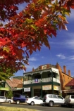 acer;australasia;Australia;australian;autuminal;autumn;autumn-colour;autumn-colours;autumnal;autumninal;Bright;building;buildings;color;colors;colour;colours;crimson;deciduous;fall;fall-color;fall-colors;foliage;heritage;historic;historic-building;historic-buildings;historical;historical-building;historical-buildings;history;leaf;leaves;maple;maples;old;red;scarlet;tradition;traditional;tree;trees;Victoria