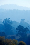 air-pollution;air-polutants;air-quality;airshed;airsheds;atmosphere;Australia;autuminal;autumn;autumnal;bad-air-quality;Berringama;burnoff;burnoffs;bush-fire;bush-fires;bush_fire;bush_fires;bushfire;bushfires;carbon-footprint;Corryong;deciduous;Eastern-Victoria;emissions;emit;emsision;environment;eucalypt;eucalypts;eucalyptus;eucalytis;fall;global-warming;greenhouse-gas;greenhouse-gases;gum;gum-tree;gum-trees;gums;haze;hazey;hazy;high-pollution-day;high-pollution-days;hill;hills;Mount-Burrowa;Mt-Burrowa;Mt.-Burrowa;pollute;polluting;pollution;poor-air-quality;season;seasonal;seasons;Shelley;smog;smoggy;smoke;smokey;smoky;Tallangatta;tree;trees;VIC;Victoria