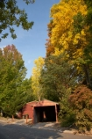 Australia;autuminal;autumn;autumn-colour;autumn-colours;autumnal;Bogong;Bogong-Village;color;colors;colour;colours;deciduous;East-Victoria;Eastern-Victoria;fall;garage;garages;leaf;leaves;Mount-Beauty;Mt-Beauty;Mt.-Beauty;old-garage;rustic;season;seasonal;seasons;tree;trees;VIC;Victoria;Victorian-Alps;yellow