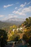 Australia;autuminal;autumn;autumn-colour;autumn-colours;autumnal;Bogong;Bogong-Village;color;colors;colour;colours;deciduous;East-Victoria;Eastern-Victoria;eucalypt;eucalypts;eucalyptus;eucalytis;fall;gum;gum-tree;gum-trees;gums;hill;hills;leaf;leaves;Mount-Beauty;Mt-Beauty;Mt-Spion-Kopje;Mt.-Beauty;season;seasonal;seasons;tree;trees;VIC;Victoria;Victorian-Alps;yellow