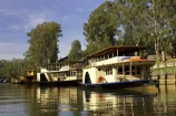 australasia;Australia;australian;boat;boats;canberra;Echuca;excursion;historic;historical;history;moama;Murray-River;n.s.w.;New-South-Wales;nsw;old;paddle;paddle-boat;paddle-boats;paddle-steam-boat;paddle-steam-boats;paddle-steamer;paddle-steamers;paddle_boat;paddle_boats;paddle_steamer;paddle_steamers;paddleboat;paddleboats;paddlesteamer;paddlesteamers;passenger;passengers;Pride-of-the-Murray;river;River-boat;river-boats;River_boat;river_boats;Riverboat;riverboats;rivers;steam-boat;steam-boats;steam_boat;steam_boats;steamboat;steamboats;steamer;steamers;tourism;tourist;tourists;travel;vessel;vessels;Victoria;watercraft