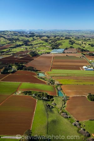 aerial;aerial-image;aerial-images;aerial-photo;aerial-photograph;aerial-photographs;aerial-photography;aerial-photos;aerial-view;aerial-views;aerials;agricultural;agriculture;ark_brown-Granular-soil;ark_brown-Granular-soils;Auckland;Auckland-region;country;countryside;crop;crops;farm;farming;farmland;farms;fertile;fertile-soil;field;fields;horticulture;market-garden;market-gardens;meadow;meadows;N.I.;N.Z.;New-Zealand;NI;North-Is;North-Island;NZ;paddock;paddocks;pasture;pastures;Pukekohe;Pukekohe-red-soil;Pukekohe-red-soils;Pukekohe-soil;Pukekohe-soils;rd-soilds;red-soil;rural;soil;South-Auckland;vegetable-garden;vegetable-gardens