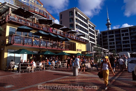 Bars Cafes Viaduct Basin Auckland Waterfront