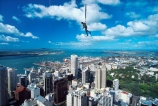 adrenalin;adrenaline;adventure-tourism;air;bungee;bungy;CBD;central-business-district;city;exciting;extreme;fly;flying;harbor;harbour;high;jumping;Waitemata