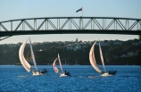 boat;bridges;harbor;harbors;harbours;mast;ocean;race;regatta;sail;sail-boat;sailboat;sailing;sails;sea;water;wind;yachting;yachts