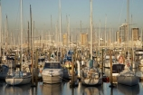 Auckland;Auckland-Marina;boat;boats;city;City-of-Sails;cityscape;cityscapes;harbor;harbors;harbour;harbours;hull;hulls;launch;launches;marina;marinas;mast;masts;moored;mooring;N.I.;N.Z.;New-Zealand;NI;North-Island;NZ;Queen-City;sail;sailing;Waitemata-Harbor;Waitemata-Harbour;Westhaven-Marina;yacht;yachts