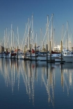 Auckland;Auckland-Marina;boat;boats;calm;city;City-of-Sails;cityscape;cityscapes;harbor;harbors;harbour;harbours;hull;hulls;launch;launches;marina;marinas;mast;masts;moored;mooring;N.I.;N.Z.;New-Zealand;NI;North-Island;NZ;placid;Queen-City;quiet;reflection;reflections;sail;sailing;serene;smooth;still;tranquil;Waitemata-Harbor;Waitemata-Harbour;water;Westhaven-Marina;yacht;yachts