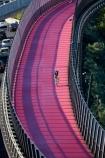 Auckland;Auckland-cycleway;bike-path;bike-pathway;cycleway;cycleways;cyclist;cyclists;lightpath;N.I.;N.Z.;Nelson-St-Cycleway;Nelson-Street-Cycleway;New-Zealand;NI;North-Is;North-Island;Nth-Is;NZ;path;pathway;pink-cycleway;pink-lightpath;pink-path;Te-Ara-Whiti