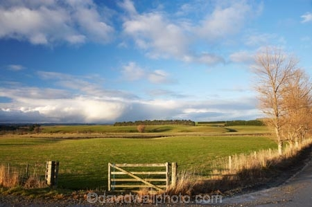 agricultural;agriculture;approaching-storm;approaching-storms;cloud;clouds;cloudy;Clutha-District;Clutha-Region;country;countryside;farm;farming;farmland;farms;field;fields;gate;gates;gateway;gateways;Kaihiku;meadow;meadows;N.Z.;New-Zealand;NZ;paddock;paddocks;pasture;pastures;rain-cloud;rain-clouds;rain-storm;rain-storms;rural;S.I.;SI;South-is;South-Island;South-Otago;storm;storm-cloud;storm-clouds;storms;weather