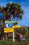 cabbage-tree;Catlins;Curio-Bay;directions;flax;locate;locations;n.z.;New-Zealand;NZ;palm;rest-room;restroom;Sign-Post;signage;signpost;signs;South-Island;Southland;toilets