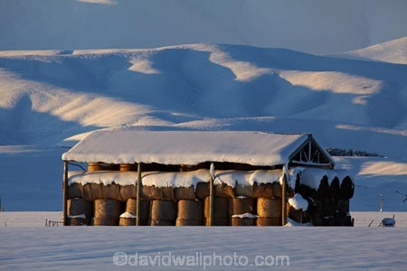 agricultural;agriculture;barn;barns;Central-Otago;cold;Coldness;country;countryside;Daytime;Exterior;extreme-weather;farm;farm-building;farm-buildings;farming;farmland;farms;field;fields;freeze;freezing;Hawkdun-Ra;Hawkdun-Range;hay;hay-bale;hay-bales;hay-barn;hay-barns;hay-shed;hay-sheds;haybarn;haybarns;hayshed;haysheds;high-country;hill;hills;Idaburn;Landscape;Landscapes;Maniototo;meadow;meadows;mountain;mountains;N.Z.;natural;Nature;New-Zealand;NZ;Otago;Oturehua;Outdoor;Outdoors;Outside;paddock;paddocks;pasture;pastures;rural;S.I.;Scenic;Scenics;Season;Seasons;shed;sheds;SI;snow;snowfall;snowy;snowy-hills;snowy-mountains;South-Is;South-Is.;South-Island;Sth-Is;straw;weather;White;winter;winter-feed;Wintertime;wintery;wintry