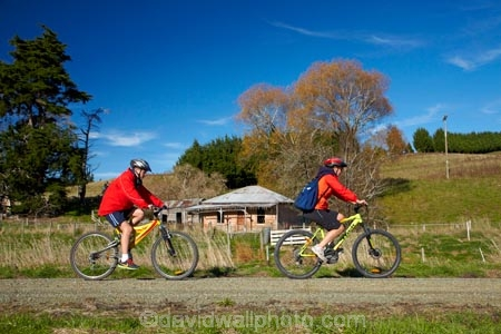 abandon;abandoned;autuminal;autumn;autumn-colour;autumn-colours;autumnal;bicycle;bicycles;bike;bike-track;bike-tracks;bike-trail;bike-trails;bikes;building;buildings;Central-Otago;character;Clutha-Gold-Bike-Trail;Clutha-Gold-Cycle-Trail;Clutha-Gold-Track;Clutha-Gold-Trail;color;colors;colour;colours;cycle;cycle-track;cycle-tracks;cycle-trail;cycle-trails;cycler;cyclers;cycles;cycleway;cycleways;cyclist;cyclists;deciduous;derelict;derelict-building;dereliction;deserted;desolate;desolation;destruction;excercise;excercising;fall;farm-house;farmhouse;gold;golden;heritage;historic;historic-building;historic-buildings;Historic-Ruins;historical;historical-building;historical-buildings;history;Lawrence;leaf;leaves;model-released;mountain-bike;mountain-biker;mountain-bikers;mountain-bikes;MR;mtn-bike;mtn-biker;mtn-bikers;mtn-bikes;N.Z.;neglect;neglected;New-Zealand;NZ;old;old-fashioned;old_fashioned;Otago;people;person;push-bike;push-bikes;push_bike;push_bikes;pushbike;pushbikes;ruin;ruins;run-down;rustic;S.I.;season;seasonal;seasons;SI;South-Is;South-Island;Sth-Is;tradition;traditional;tree;trees;vintage;yellow