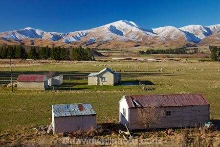 agricultural;agriculture;building;buildings;Central-Otago;cold;Coldness;country;countryside;extreme-weather;farm;Farm-Building;Farm-Buildings;Farm-Shed;Farm-Sheds;farming;farmland;farms;field;fields;freeze;freezing;heritage;historic;historic-building;historic-buildings;historical;historical-building;historical-buildings;history;Kakanui-Mountains;Maniototo;meadow;meadows;N.Z.;New-Zealand;NZ;old;Old-farm-buildings;Otago;paddock;paddocks;pasture;pastures;rural;S.I.;Scenic;Scenics;Season;Seasons;SI;snow;snowy;South-Is;South-Island;Sth-Is;tradition;traditional;weather;white;winter;Wintertime;wintery;wintry
