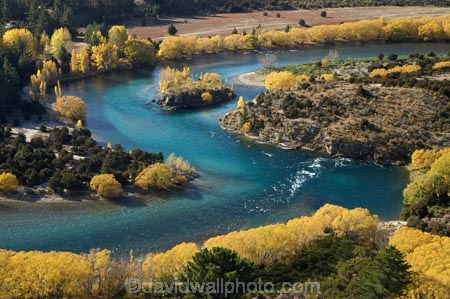 s-bend;aerial;aerial-photo;aerial-photograph;aerial-photographs;aerial-photography;aerial-photos;aerial-view;aerial-views;aerials;autuminal;autumn;autumn-colour;autumn-colours;autumnal;bend;bends;blue-water;Central-Otago;clean-water;clear-water;Clutha-River;color;colors;colour;colours;curve;curves;deciduous;Devils-Elbow-Bend;Devils-Elbow-Bend;fall;golden;horseshoe-bend;horseshoe-bends;Luggate;N.Z.;New-Zealand;NZ;Otago;oxbow-bend;pure-water;river;rivers;s-bend;S.I.;season;seasonal;seasons;SI;South-Is.;South-Island;tree;trees;Upper-Clutha;willow;willow-tree;willow-trees;willows;yellow
