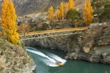 adrenaline;adventure;adventure-tourism;autuminal;autumn;autumn-colour;autumn-colours;autumnal;boat;boats;bridge;bridges;canyon;canyons;Central-Otago;color;colors;colour;colours;danger;deciduous;er;exciting;fall;fast;foot-bridge;foot-bridges;footbridge;footbridges;fun;gold-mines;gold-mining;Goldfields;Goldfields-Jet;Goldfields-Jetboat;Goldfields-Jetboats;Goldfields-Mining-Centre;Goldfields-tourist-attraction;gorge;gorges;jet-boat;jet-boats;jet_boat;jet_boats;jetboat;jetboats;Kawarau-Gorge;Kawarau-River;leaf;leaves;N.Z.;narrow;new-zealand;NZ;Otago;passenger;passengers;pedestrian-bridge;pedestrian-bridges;quick;red;ride;rides;river;river-bank;riverbank;rivers;rock;rocks;rocky;S.I.;season;seasonal;seasons;SI;South-Is;South-Island;speed;speeding;speedy;splash;spray;thrill;tour;tourism;tourist;tourists;tours;tree;trees;wake;water
