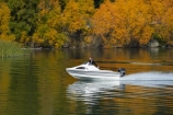 autuminal;autumn;autumn-colour;autumn-colours;autumnal;boat;boats;calm;Central-Otago;color;colors;colour;colours;Cornish-Point;Cromwell;deciduous;fall;Lake-Dunstan;leaf;leaves;N.Z.;New-Zealand;NZ;Otago;placid;pleasure-boat;pleasure-boats;pleasure-craft;pleasure-crafts;power-boat;power-boats;quiet;reflection;reflections;S.I.;season;seasonal;seasons;serene;SI;smooth;South-Is;South-Island;speed-boat;speed-boats;Sth-Is;still;tranquil;tree;trees;water
