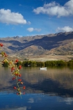 berries;berry;boat;boats;briar;briars;calm;Central-Otago;Clutha-Arm;fishing;lake;Lake-Dunstan;lakes;mountain;mountain-range;mountains;N.Z.;New-Zealand;NZ;Otago;Pisa-Mountain;Pisa-Range;placid;plant;pleasure-boat;pleasure-boats;power-boat;power-boats;quiet;range;ranges;red;red-berries;red-berry;reflected;reflection;reflections;rose_hip;rosehip;S.I.;serene;SI;smooth;South-Is;South-Is.;South-Island;Sth-Is;still;thorn;thorns;thorny;tranquil;water