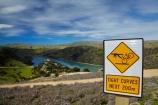 bicycle;bicycles;bike;bike-track;bike-tracks;bike-trail;bike-trails;bikes;Central-Otago;cycle-track;cycle-tracks;cycle-trail;cycle-trails;lake;Lake-Roxburgh;lakes;N.Z.;New-Zealand;NZ;Otago;road-sign;Roxburgh;Roxburgh-Cycle-Track;Roxburgh-Cycle-Trail;Roxburgh-Gorge;Roxburgh-Gorge-Cycle-and-Walking-Trail;Roxburgh-Gorge-Cycle-Track;Roxburgh-Gorge-Cycle-Trail;Roxburgh-Gorge-Track;Roxburgh-Gorge-Trail;Roxburgh-Gorge-Walking-and-Cycle-Trail;S.I.;season;seasonal;seasons;SI;sign;signpost;signposts;signs;South-Is;South-Island;spring;spring-time;Sth-is;thyme;thyme-in-flower;traffic-sign;traffic-signs;violet;warning-sign;warning-signs;wild-thyme