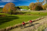 agricultural;agriculture;autuminal;autumn;autumn-colour;autumn-colours;autumnal;bicycle;bicycles;bike;bike-track;bike-tracks;bike-trail;bike-trails;bikes;Central-Otago;Clutha-Gold-Bike-Trail;Clutha-Gold-Cycle-Trail;Clutha-Gold-Track;Clutha-Gold-Trail;color;colors;colour;colours;country;countryside;cycle;cycle-track;cycle-tracks;cycle-trail;cycle-trails;cycler;cyclers;cycles;cycleway;cycleways;cyclist;cyclists;deciduous;Evans-Flat;excercise;excercising;fall;farm;farming;farmland;farms;field;fields;gold;golden;Lawrence;leaf;leaves;meadow;meadows;model-released;mountain-bike;mountain-biker;mountain-bikers;mountain-bikes;MR;mtn-bike;mtn-biker;mtn-bikers;mtn-bikes;N.Z.;New-Zealand;NZ;Otago;paddock;paddocks;pasture;pastures;people;person;push-bike;push-bikes;push_bike;push_bikes;pushbike;pushbikes;rural;S.I.;season;seasonal;seasons;SI;South-Is;South-Island;Sth-Is;tree;trees;willow-tree;willow-trees;yellow