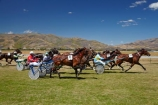 Central-Otago;Cromwell;Cromwell-Racecourse;Cromwell-Races;horse;horse-race;horse-races;horse-racing;horses;N.Z.;New-Zealand;NZ;Otago;race;races;racing;S.I.;SI;South-Is;South-Island;Sth-Is;trot;trots;trotting;trotting-races