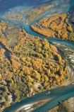 s-bend;aerial;aerial-photo;aerial-photograph;aerial-photographs;aerial-photography;aerial-photos;aerial-view;aerial-views;aerials;autuminal;autumn;autumn-colour;autumn-colours;Autumn-Willow-Trees;autumnal;bend;bends;braided-river;braided-rivers;Central-Otago;Clutha-River;Clutha-River-Delta;color;colors;colour;colours;creek;creeks;deciduous;delta;deltas;fall;golden;meander;meandering;meandering-river;meandering-rivers;N.Z.;New-Zealand;NZ;Otago;river;river-delta;river-deltas;rivers;s-bend;S.I.;season;seasonal;seasons;SI;South-Is.;South-Island;stream;streams;tree;trees;Upper-Clutha;willow;willow-tree;willow-trees;willows;yellow