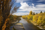 Alexandra;autuminal;autumn;autumn-colour;autumn-colours;autumnal;blow;Central-Otago;color;colors;colour;colours;deciduous;fall;gale;gale-force-wind;gale-force-winds;galeforce;galeforce-wind;galefore-winds;golden;gust;gusty;Manuherikia-River;N.Z.;New-Zealand;NZ;Otago;poplar;poplar-tree;poplar-trees;poplars;river;rivers;S.I.;season;seasonal;seasons;SI;South-Is.;South-Island;Strong-Wind;tree;trees;water;weather;willow;willow-tree;willow-trees;willows;wind;windy;yellow