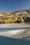 autuminal;autumn;autumn-colour;autumn-colours;autumnal;Bannockburn;Carrick-Range;Central-Otago;color;colors;colour;colours;deciduous;fall;lake;Lake-Dunstan;lakes;N.Z.;near-Cromwell;New-Zealand;NZ;Otago;river;rivers;S.I.;season;seasonal;seasons;SI;silt-up;siltation;silting;silting-up;South-Is.;South-Island;tree;trees;water