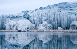 Alexandra;beautiful;Butchers-Dam;calm;calmness;Central-Otago;clean;clear;cold;Coldness;Color;Colour;dam;dams;Daytime;Exterior;freeze;freezing;freezing-fog;frost;Frosted;frosty;frozen-dam;frozen-dams;frozen-lake;frozen-lakes;frozen-pond;frozen-ponds;frozen-water;high-country;hoar-frost;hoar-frosts;Hoarfrost;hoarfrosts;ice;ice-crystals;icy;idyllic;lake;lakes;Landscape;Landscapes;N.Z.;natural;Nature;new-zealand;NZ;Otago;Outdoor;Outdoors;Outside;peaceful;Peacefulness;phenomena;phenomenon;placid;pond;ponds;poplar;poplar-tree;poplar-trees;poplars;pure;Quiet;Quietness;reflection;reflections;reservoir;reservoirs;rime;rime-ice;S.I.;Scenic;Scenics;Season;Seasons;serene;SI;silence;smooth;south-island;spectacular;still;stunning;tranquil;tranquility;tree;trees;view;water;weather;weeping-willow;weeping-willows;White;willow;willow-tree;willow-trees;willows;winter;Wintertime;wintery;wintry