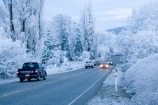 beautiful;calm;calmness;car;cars;Central-Otago;clean;clear;cold;Coldness;Color;Colour;Daytime;driving;Exterior;freeze;freezing;freezing-fog;frost;Frosted;frosty;high-country;highway;highways;hoar-frost;hoar-frosts;Hoarfrost;hoarfrosts;ice;ice-crystals;icy;icy-road;icy-roads;idyllic;Landscape;Landscapes;N.Z.;natural;Nature;new-zealand;NZ;open-road;open-roads;Otago;Outdoor;Outdoors;Outside;peaceful;Peacefulness;phenomena;phenomenon;poplar;poplar-tree;poplar-trees;poplars;pure;Quiet;Quietness;rime;rime-ice;road;road-trip;roads;S.I.;Scenic;Scenics;Season;Seasons;SI;silence;slippery-road;slippery-roads;south-island;spectacular;straight;stunning;traffic;tranquil;tranquility;transport;transportation;travel;traveling;travelling;tree;trees;trip;view;water;weather;White;winter;winter-driving;winter-driving-conditions;winter-road;winter-roads;Wintertime;wintery;wintry