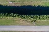 aerial;Aerial-drone;Aerial-drones;aerial-image;aerial-images;aerial-photo;aerial-photograph;aerial-photographs;aerial-photography;aerial-photos;aerial-view;aerial-views;aerials;agricultural;agriculture;Canterbury;Canterbury-Plain;Canterbury-Plains;country;countryside;Darfield;Drone;Drones;farm;farming;farmland;farms;field;fields;hedge;hedges;meadow;meadows;Mid-Canterbury;N.Z.;New-Zealand;NZ;paddock;paddocks;pasture;pastures;Quadcopter-aerial;Quadcopters-aerials;rural;S.I.;shelter-belt;shelter-belts;shelter_belt;shelter_belts;shelterbelt;shelterbelts;SI;South-Is;South-Island;Sth-Is.;U.A.V.-aerial;UAV-aerials;wind-break;wind-breaks;wind_break;wind_breaks;windbreak;windbreaks