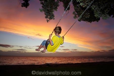 7-year-old;7-years-old;8-year-old;8-years-old;boy;boys;child;children;coast;coastal;Coromandel;Coromandel-Peninsula;dusk;eight-year-old;eight-years-old;evening;fill-flash;fill_flash;fillflash;Firth-of-Thames;fun;happy;joy;kid;kids;kiwi-icon;kiwi-icons;kiwiana;little-boy;little-boys;N.I.;N.Z.;New-Zealand;NI;nightfall;North-Is;North-Is.;North-Island;NZ;orange;outdoor;outside;people;person;play;playing;Pohutukawa-Tree;Pohutukawa-Trees;rope-swing;rope-swings;seven-year-old;seven-years-old;shore;sky;summer;sunset;sunsets;swing;swinging;swings;Tararu;Thames;Thames-Coast;twilight;Waikato;young-boy;young-boys