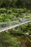 bridge;bridges;Coromandel;Coromandel-Peninsula;foot-bridge;foot-bridges;footbridge;footbridges;hike;hikes;hiking;hiking-track;hiking-tracks;Karangahake-Gorge;Karangahake-Gorge-Historic-Walkway;Karangahake-Gorge-Track;Karangahake-Gorge-Walk;Karangahake-Gorge-Walkway;N.I.;N.Z.;New-Zealand;NI;North-Is;North-Is.;North-Island;NZ;Ohinemuri-River;Paeroa;pedestrian-bridge;pedestrian-bridges;river;rivers;rope-bridge;rope-bridges;suspension-bridge;suspension-bridges;swing-bridge;swing-bridges;Swingbridge;track;tracks;tramp;tramping;tramps;Waikato;walk;walking;walking-track;walking-tracks;walks;wire-bridge;wire-bridges