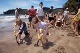 beach;beaches;boy;boys;brother;brothers;child;children;coast;coastal;coastline;Coromandel;Coromandel-Peninsula;crowd;dig;digging;families;family;girl;girls;holiday;holidays;hot;hot-pool;hot-pools;hot-spring;hot-springs;hot-water;Hot-Water-Beach;kid;kids;little-boy;little-boys;little-girl;little-girls;N.I.;N.Z.;New-Zealand;NI;North-Is;North-Is.;North-Island;NZ;people;person;sand;sandy;shore;shoreline;sibling;siblings;sister;sisters;summer;thermal;thermal-pool;thermal-pools;thermal-spring;thermal-sprints;tourism;tourist;tourists;vacation;vacations;Waikato
