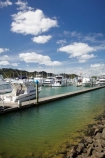 boat;boats;calm;calmness;Coromandel;Coromandel-Peninsula;fishing-boats;harbor;harbors;harbour;harbours;launch;launches;marina;marinas;N.I.;N.Z.;New-Zealand;NI;North-Is;North-Is.;North-Island;NZ;port;ports;sail;sailing;still;stillness;Waikato;Whitianga;Whitianga-Marina;yacht;yachts