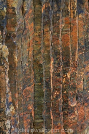 basalt;basalt-column;basalt-columns;basalt-formation;basalt-formations;basalt-organ_pipe-extrusions;basaltic-lava;bluff;bluffs;cliff;cliffs;coast;coastal;coastline;coastlines;coasts;columnar-basalt;columnar-jointed-basalt;Dunedin;extrusive-volcanic-rock;formations;geological;geology;hexagonal-basalt-columns;hexagonally-jointed-basalt-columns;lava-column;lava-columns;N.Z.;New-Zealand;Otago;Otago-Peninsula;polygonal;rock;rock-column;rock-columns;rock-formation;rock-formations;rock-outcrop;rock-outcrops;rocks;S.I.;Sandymount;SI;South-Is;South-Island;Sth-Is;stone;volcanic;volcanic-column;volcanic-columns;volcanic-formation;volcanic-formations;volcanic-rock