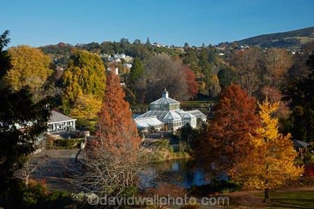 autuminal;autumn;autumn-colour;autumn-colours;autumn-tree;autumn-trees;autumnal;Botanic-Garden;Botanic-Gardens;Botanical-Garden;Botanical-Gardens;city-garden;city-gardens;color;colors;colour;colours;council-garden;council-gardens;deciduous;duck-pond;duck-ponds;Dunedin;Dunedin-Botanic-Garden;Dunedin-Botanic-Gardens;Dunedin-Botanical-Garden;Dunedin-Botanical-Gardens;Dunedin-Gardens;fall;garden;gardens;glass-house;glass-houses;glasshouse;glasshouses;leaf;leaves;N.Z.;New-Zealand;North-Dunedin;NZ;Otago;plant;plants;pond;ponds;S.I.;season;seasonal;seasons;SI;South-Is;South-Is.;South-Island;Sth-Is;still;tranquil;tree;trees;water