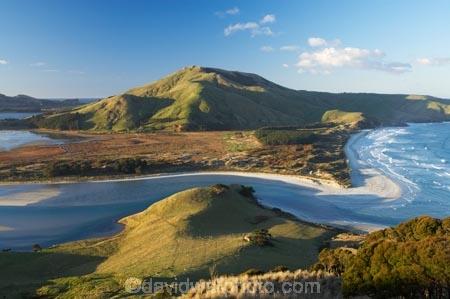 Allans-Beach;coast;coastal;coastline;coastlines;coasts;Dunedin;estuaries;estuary;Hoopers-Inlet;Hoopers-Inlet;inlet;inlets;lagoon;lagoons;Mount-Charles;Mt-Charles;Mt.-Charles;N.Z.;New-Zealand;NZ;ocean;Otago-Peninsula;S.I.;Sandy-Mount;Sandymount;sea;shore;shoreline;shorelines;shores;SI;South-Is.;South-Island;tidal;tide;water