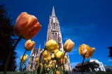 presbyterian;spires;turrets;night;floodlit;floodlights;architecture;historical;historic;tulip;tulips;churches;cathedral;cathedrals