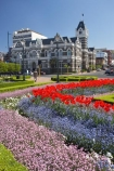 1899;1906;Architect;architecture;bloom;blooming;blooms;building;buildings;color;colorful;colors;colour;colourful;colours;council-gardens;Court;Courts;District-Court;District-Courts;Dunedin;Dunedin-Court;Dunedin-Courts;Dunedin-High-Court;Dunedin-Law-Courts;floral;flower;flower-bed;flower-beds;flower-garden;flower-gardens;flowers;fresh;garden;gardens;grow;growth;heritage;High-Court;High-Courts;Historic;historic-building;historic-buildings;historical;historical-building;historical-buildings;history;John-Campbell;justice;justice-system;law;Law-Court;Law-Courts;legal;N.Z.;New-Zealand;NZ;old;Otago;S.I.;season;seasonal;seasons;SI;South-Is.;South-Island;spring;Spring-Flowers;springtime;tradition;traditional;tulip;tulips