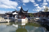 architecture;asian-oriental;building;buildings;Chinese-Garden;Chinese-Gardens;Chinese-Pagoda;Ching-Dynasty-Scholars-Garden;city-garden;city-gardens;council-gardens;Dunedin;Dunedin-Chinese-Garden;Dunedin-Chinese-Gardens;garden;N.Z.;New-Zealand;NZ;Otago;pagoda;pond;ponds;pools;S.I.;SI;South-Is.;South-Island