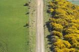 agricultural;agriculture;Allanton-_-Sroggs-Hill-Rd;Allanton-_-Sroggs-Hill-Road;Allanton-Scroggs-Hill-Rd;Allanton-Scroggs-Hill-Road;Bloom;country;countryside;Dunedin;farm;farming;farmland;farms;field;fields;flower;flowers;fresh;gorse;gorse-flower;gorse-flowers;gravel-road;gravel-roads;grow;growth;meadow;meadows;metal-road;metal-roads;metalled-road;metalled-roads;N.Z.;New-Zealand;NZ;Otago;paddock;paddocks;pasture;pastures;pest;renew;road;roads;rural;S.I.;season;seasonal;seasons;SI;South-Is.;South-Island;spring;springtime;steep;Taieri;Ulex-europaeus;weed;weeds;yellow-flower;yellow-flowers