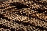bulk;dock;docks;Dunedin;export;export-logs;exporting;exports;forestry;forestry-industry;import;importing;industrial;industry;log;log-stack;log-stacks;logging;logs;lumber;N.Z.;New-Zealand;NZ;Otago;Otago-port;pattern;patterns;pier;piers;pine;pine-tree;pine-trees;pines;pinus-radiata;port;Port-Chalmers;Port-of-Otago;Port-Otago;ports;Pt-Chalmers;quay;quays;S.I.;SI;South-Is;South-Is.;South-Island;Sth-Is;stockpile;stockpiles;timber;timber-industry;trade;tree;tree-trunk;tree-trunks;trees;waterside;wharf;wharfes;wharves;wood